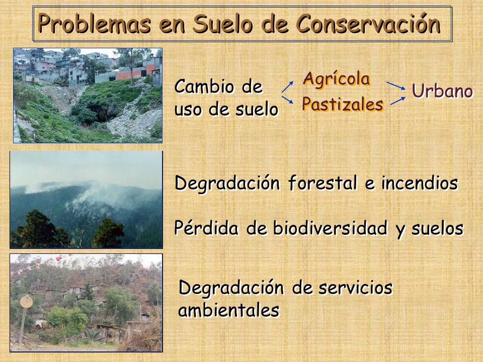 Problemas en Suelo de Conservación Cambio de uso de suelo Cambio de uso de suelo Degradación forestal e incendios Pérdida de biodiversidad y suelos Degradación forestal e incendios Pérdida de biodiversidad y suelos Degradación de servicios ambientales Agrícola Pastizales Urbano