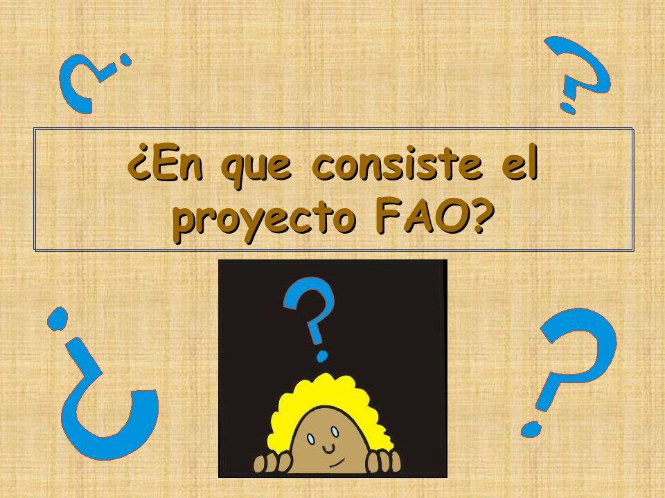 ¿En que consiste el proyecto FAO?