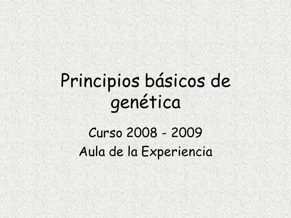Principios básicos de genética Curso 2008 - 2009 Aula de la Experiencia