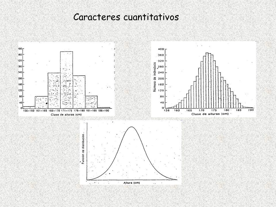 Caracteres cuantitativos