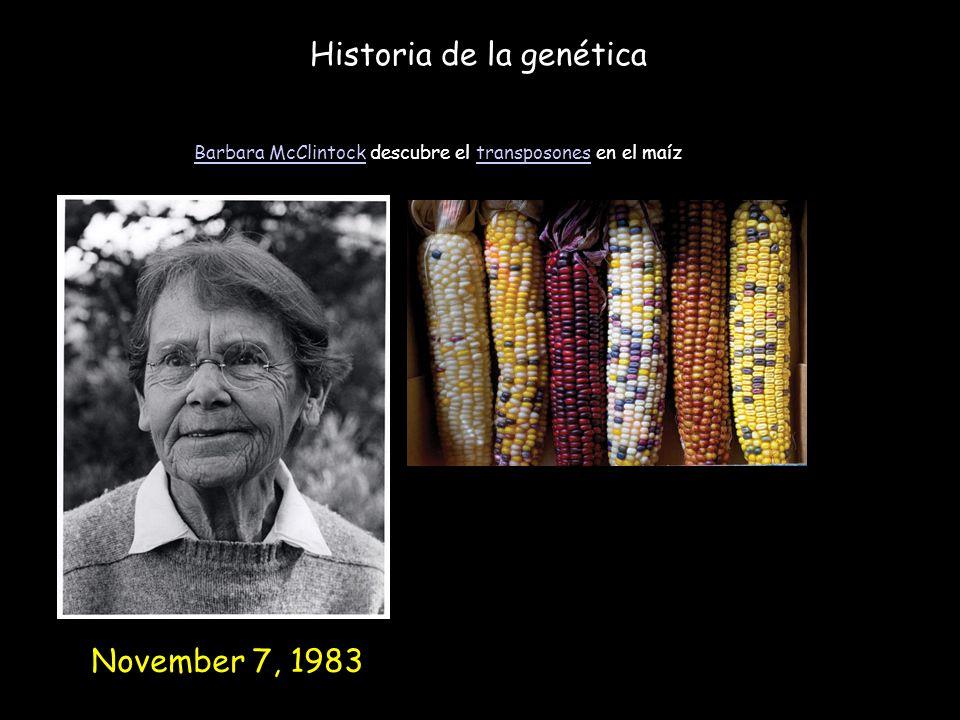 Historia de la genética Barbara McClintockBarbara McClintock descubre el transposones en el maíztransposones November 7, 1983