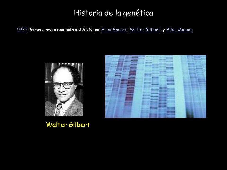 Historia de la genética 19771977 Primera secuenciación del ADN por Fred Sanger, Walter Gilbert, y Allan MaxamFred SangerWalter GilbertAllan Maxam Walt