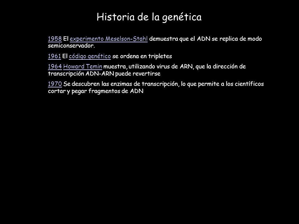 19581958 El experimento Meselson-Stahl demuestra que el ADN se replica de modo semiconservador.experimento Meselson-Stahl 19611961 El código genético
