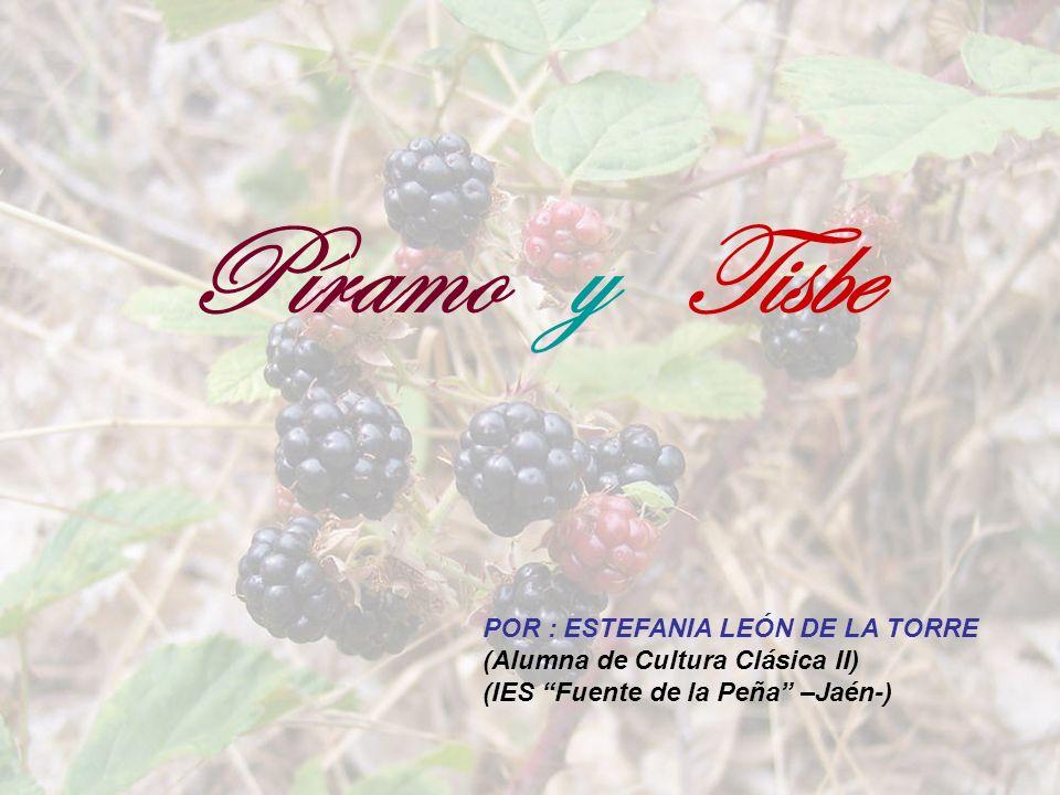 Píramo y Tisbe POR : ESTEFANIA LEÓN DE LA TORRE (Alumna de Cultura Clásica II) (IES Fuente de la Peña –Jaén-)