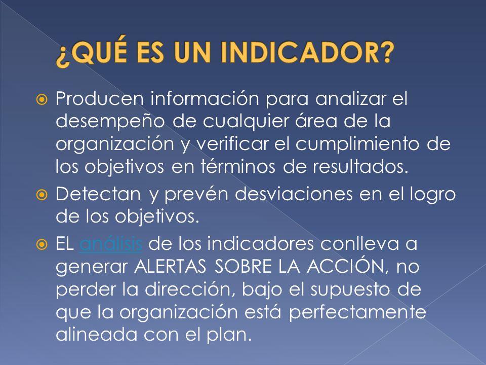 Producen información para analizar el desempeño de cualquier área de la organización y verificar el cumplimiento de los objetivos en términos de resultados.
