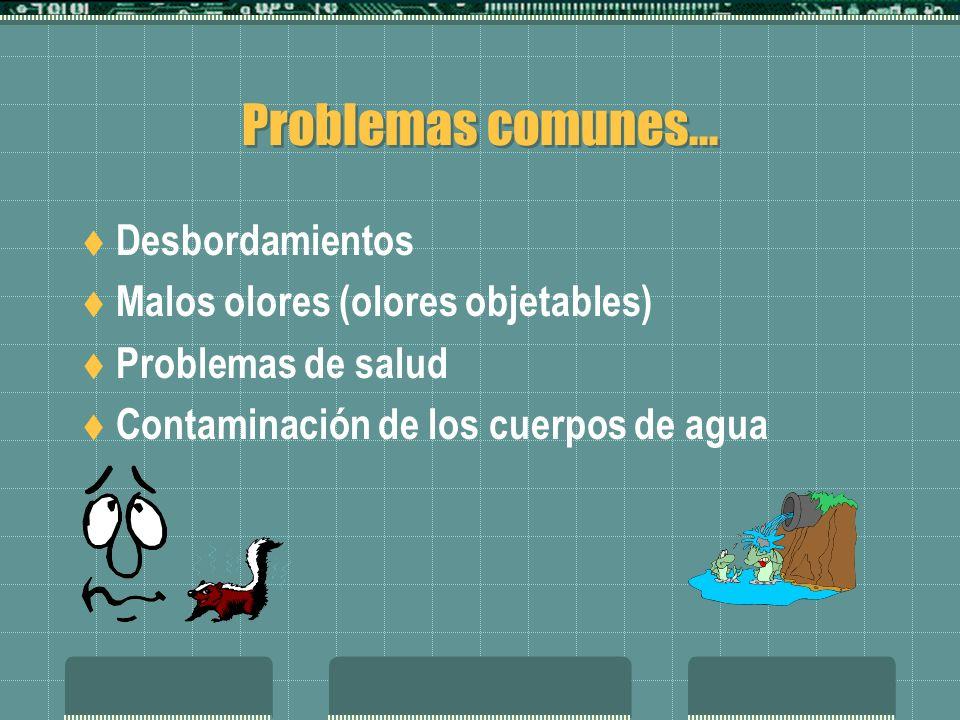 Problemas comunes... Desbordamientos Malos olores (olores objetables) Problemas de salud Contaminación de los cuerpos de agua