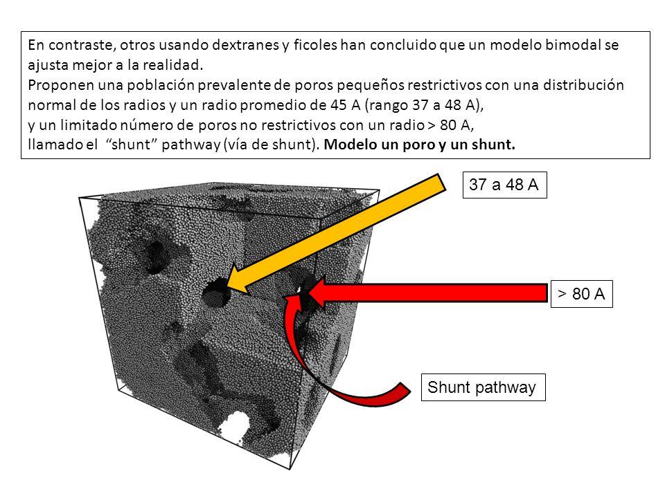 En contraste, otros usando dextranes y ficoles han concluido que un modelo bimodal se ajusta mejor a la realidad. Proponen una población prevalente de