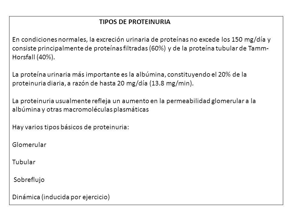 TIPOS DE PROTEINURIA En condiciones normales, la excreción urinaria de proteínas no excede los 150 mg/día y consiste principalmente de proteínas filtr