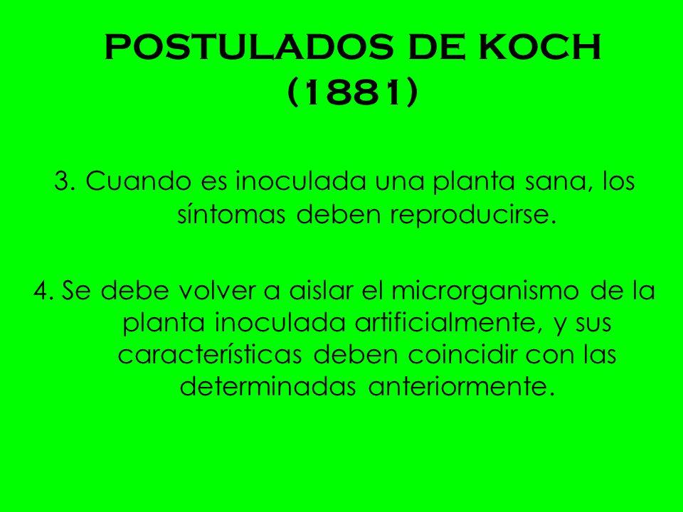 POSTULADOS DE KOCH (1881) 3.Cuando es inoculada una planta sana, los síntomas deben reproducirse.