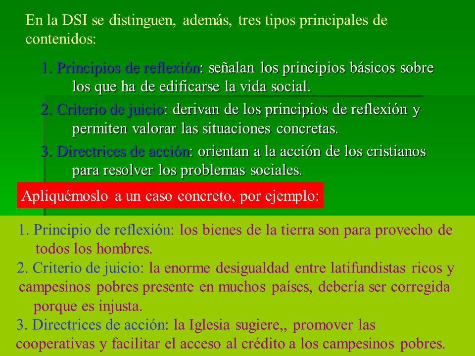 En la DSI se distinguen, además, tres tipos principales de contenidos: 1.