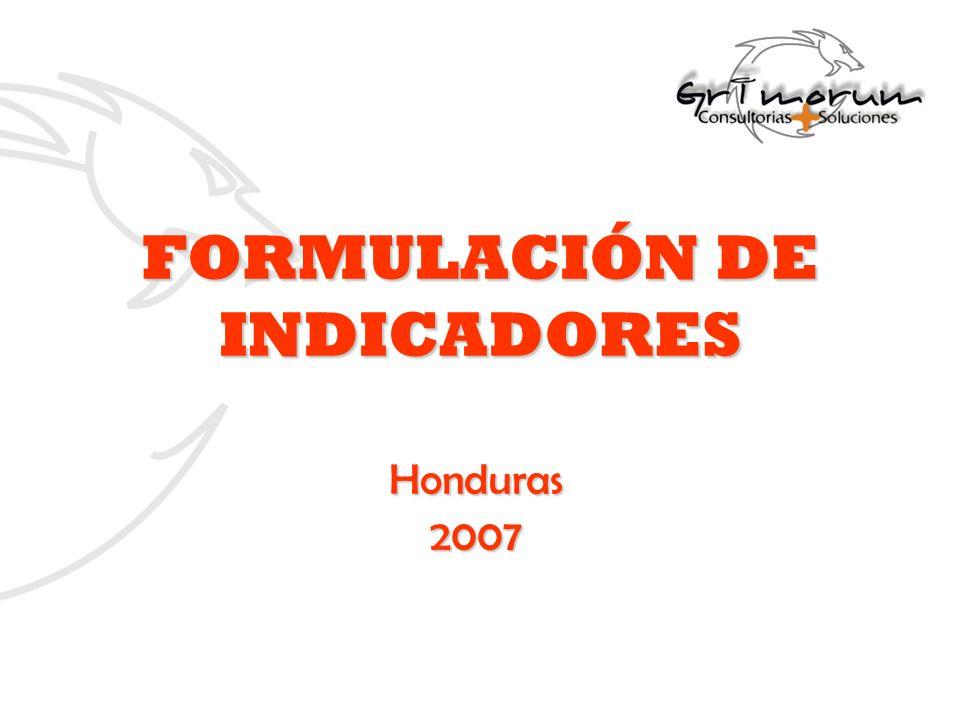 FORMULACIÓN DE INDICADORES Honduras2007