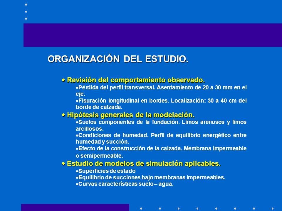 ORGANIZACIÓN DEL ESTUDIO. Revisión del comportamiento observado.