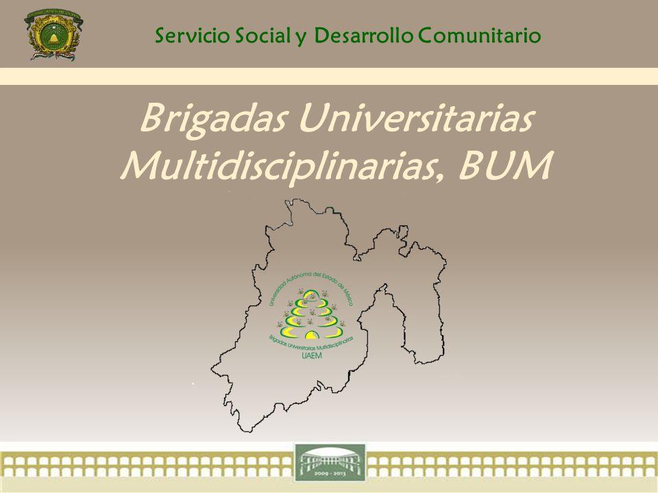 Servicio Social y Desarrollo Comunitario ORGANIZACIÓN 2.Los alumnos participantes deben cumplir los créditos requeridos por su espacio académico.