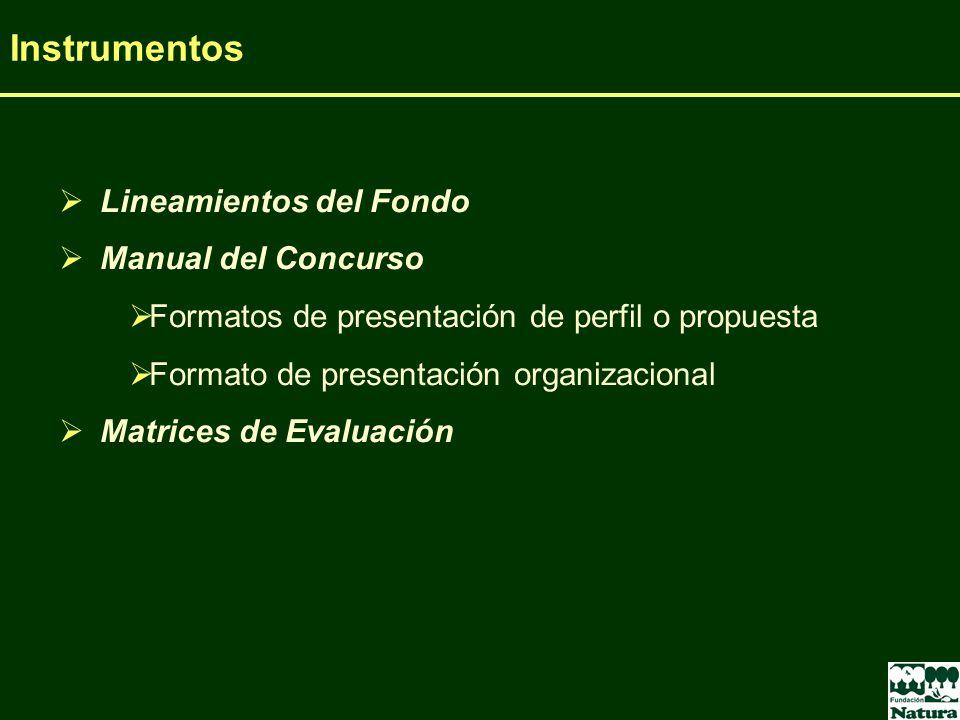 Lineamientos del Fondo Manual del Concurso Formatos de presentación de perfil o propuesta Formato de presentación organizacional Matrices de Evaluació