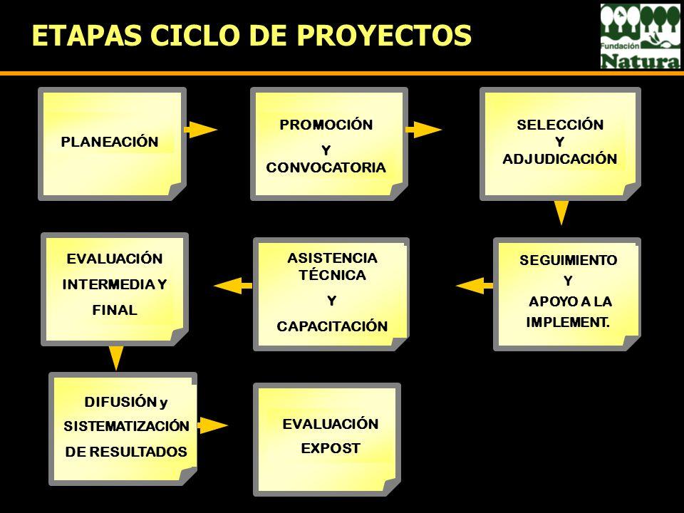 ETAPAS CICLO DE PROYECTOS EVALUACIÓN EXPOST PROMOCIÓN Y CONVOCATORIA ASISTENCIA TÉCNICA Y CAPACITACIÓN SELECCIÓN Y ADJUDICACIÓN PLANEACIÓN EVALUACIÓN