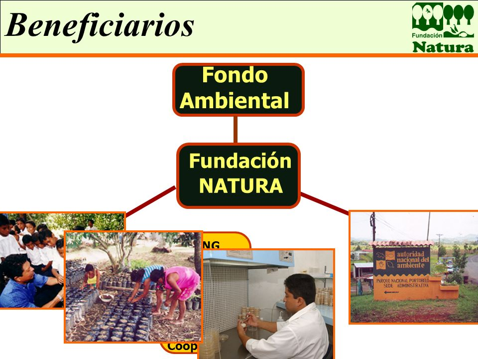 Beneficiarios Áreas Protegidas Fondo Ambiental Fundación NATURA Organizaciones sin fines de lucro ONG Grupos Comunitarios Entidades Educativas Coopera