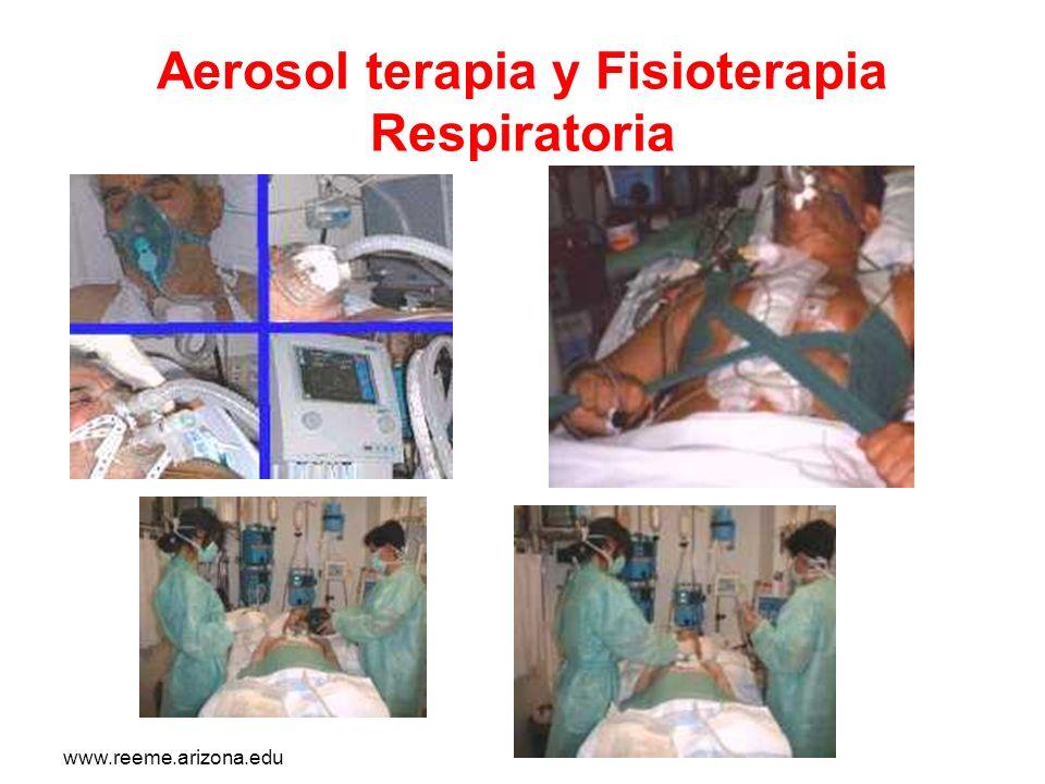 www.reeme.arizona.edu Aerosol terapia y Fisioterapia Respiratoria