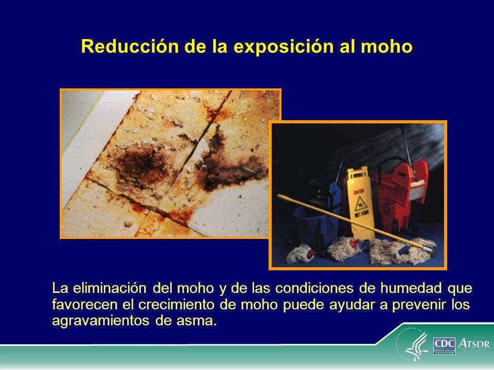 Reducción de la exposición al moho La eliminación del moho y de las condiciones de humedad que favorecen el crecimiento de moho puede ayudar a preveni