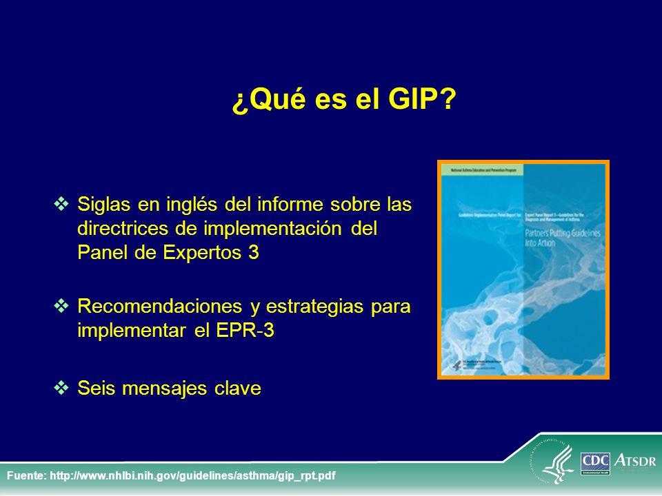 ¿Qué es el GIP? Siglas en inglés del informe sobre las directrices de implementación del Panel de Expertos 3 Recomendaciones y estrategias para implem