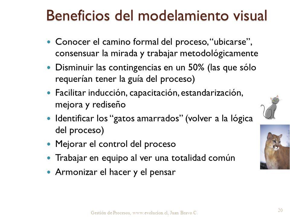 Beneficios del modelamiento visual Conocer el camino formal del proceso, ubicarse, consensuar la mirada y trabajar metodológicamente Disminuir las con