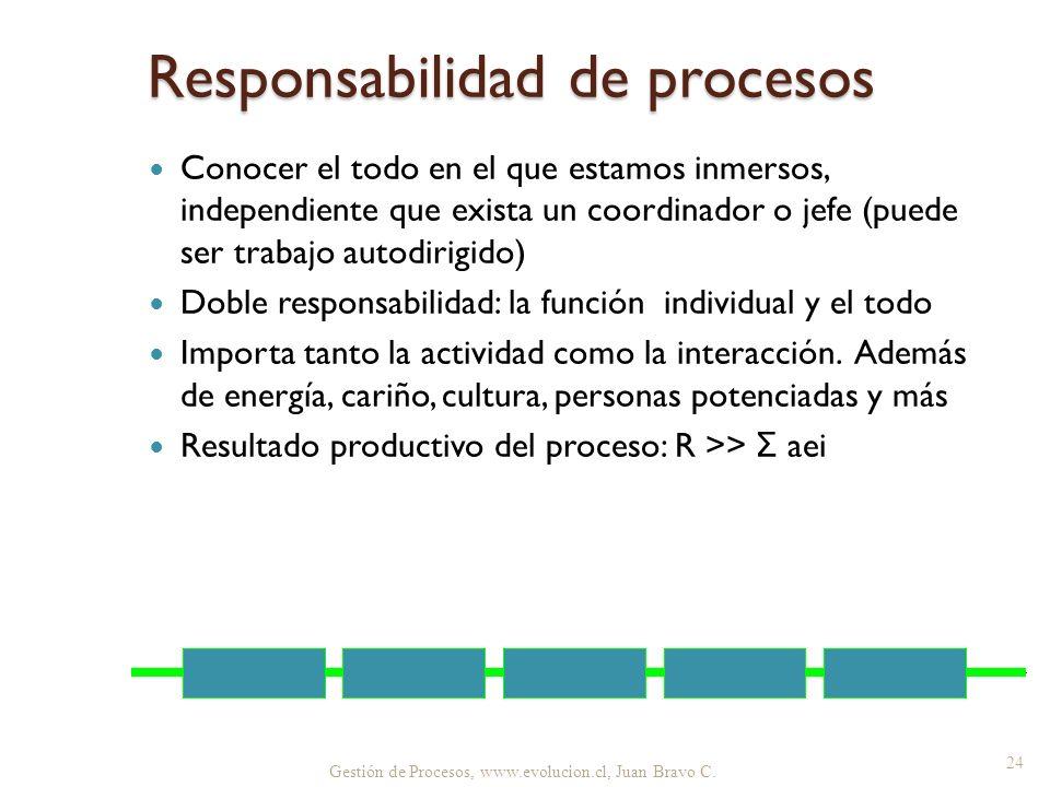 Gestión de Procesos, www.evolucion.cl, Juan Bravo C. Responsabilidad de procesos Conocer el todo en el que estamos inmersos, independiente que exista