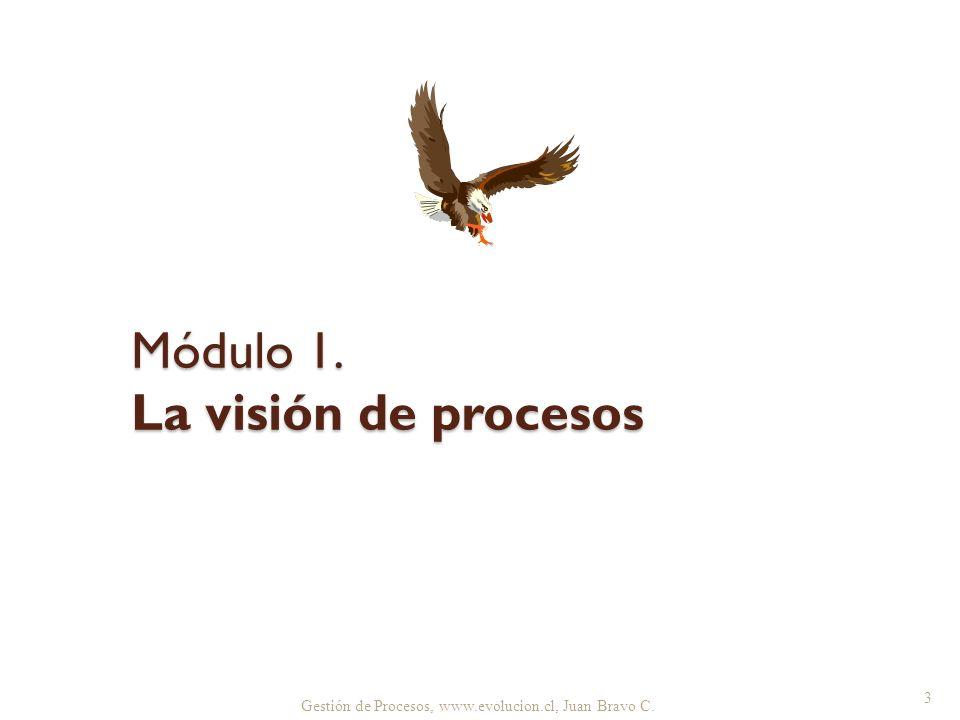 Gestión de Procesos, www.evolucion.cl, Juan Bravo C. Módulo 1. La visión de procesos 3