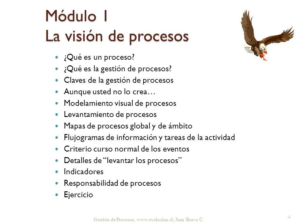 Gestión de Procesos, www.evolucion.cl, Juan Bravo C. ¿Qué es un proceso? ¿Qué es la gestión de procesos? Claves de la gestión de procesos Aunque usted