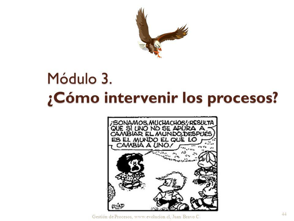 Gestión de Procesos, www.evolucion.cl, Juan Bravo C. Módulo 3. ¿Cómo intervenir los procesos? 44