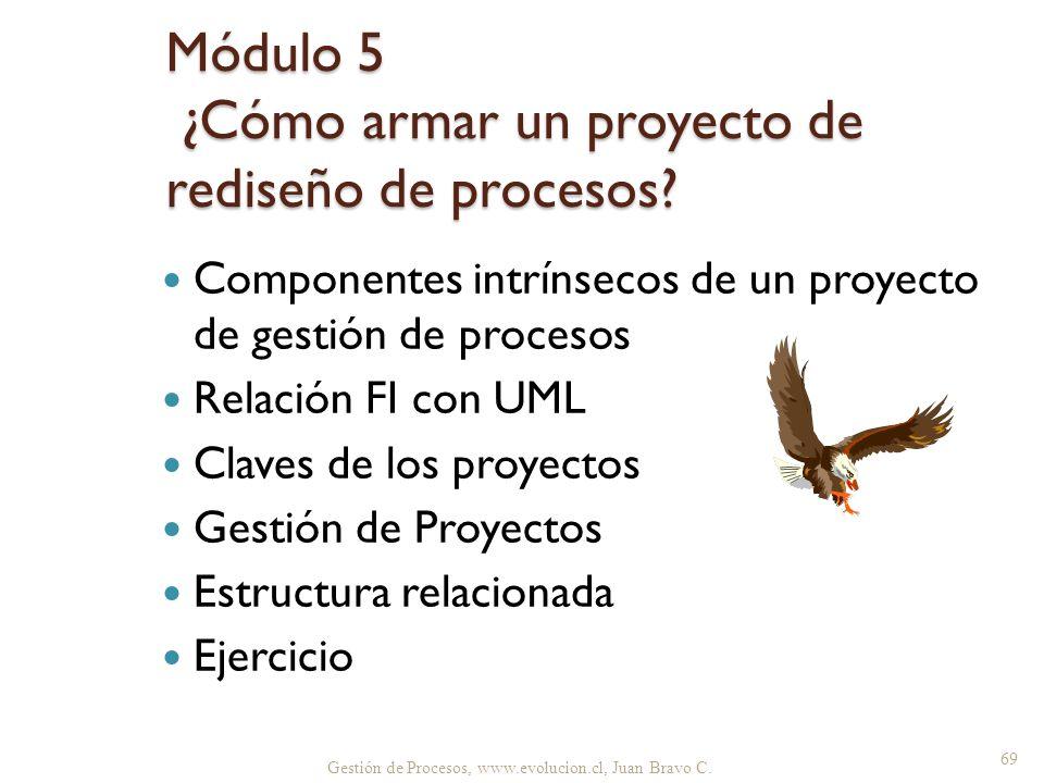 Gestión de Procesos, www.evolucion.cl, Juan Bravo C. Módulo 5 ¿Cómo armar un proyecto de rediseño de procesos? Componentes intrínsecos de un proyecto