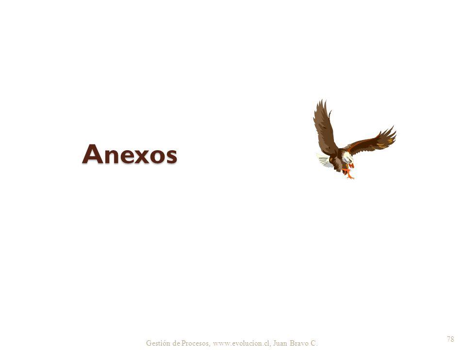 Gestión de Procesos, www.evolucion.cl, Juan Bravo C. Anexos 78