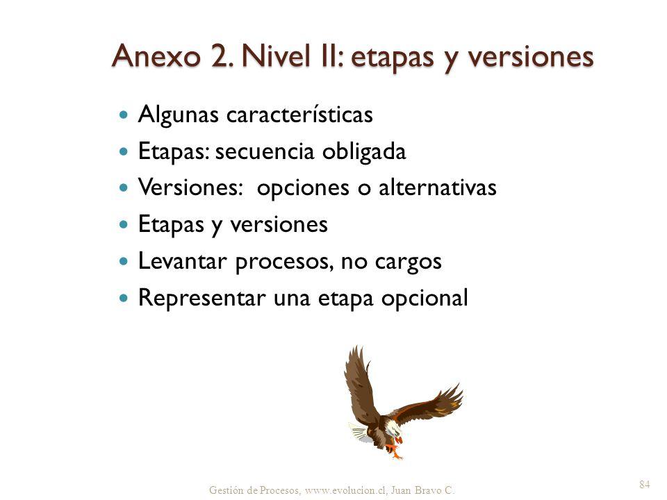 Gestión de Procesos, www.evolucion.cl, Juan Bravo C. Anexo 2. Nivel II: etapas y versiones Algunas características Etapas: secuencia obligada Versione