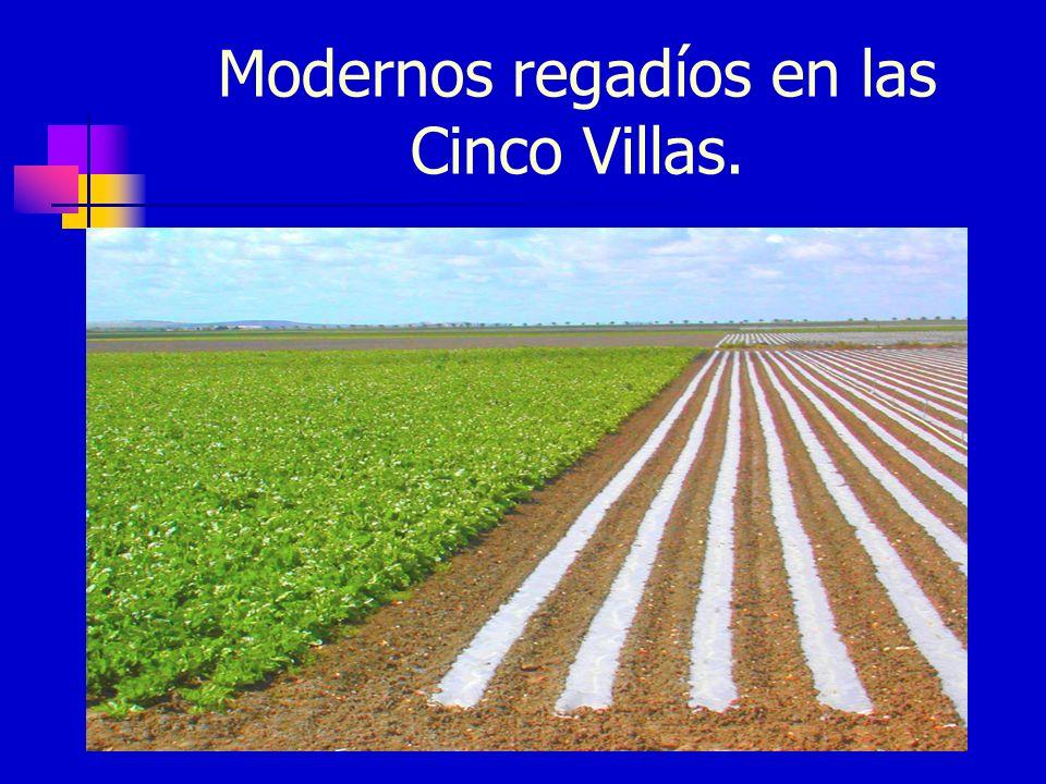 Modernos regadíos en las Cinco Villas.