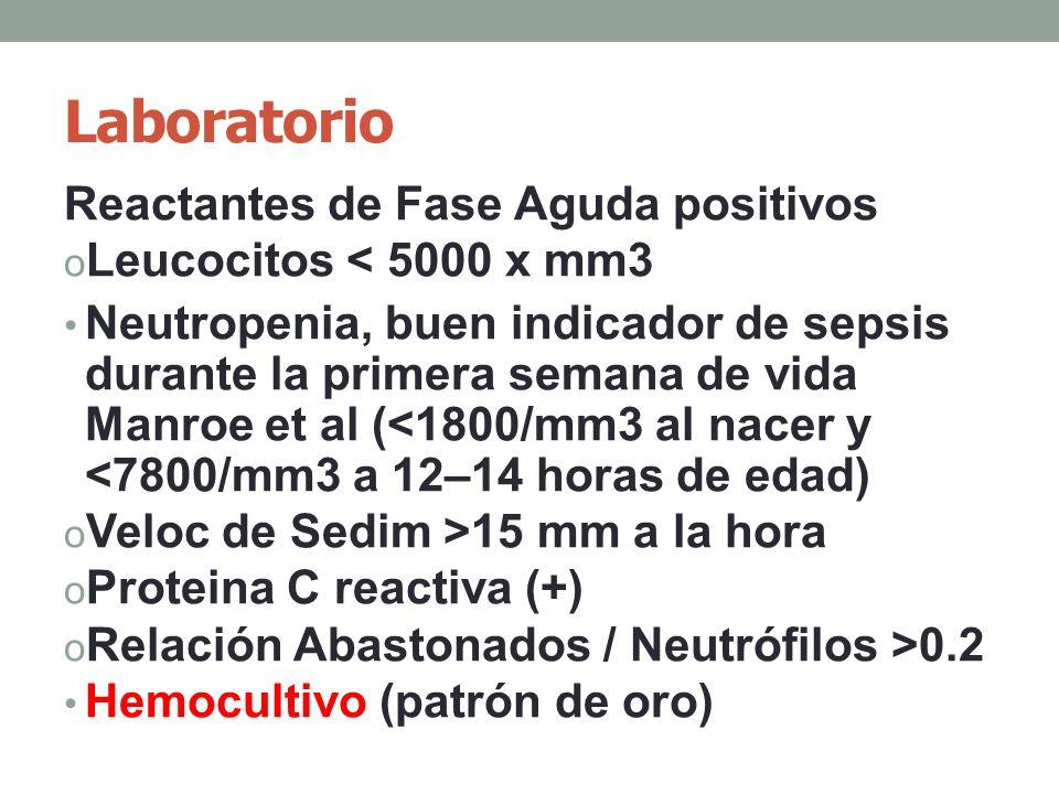 Laboratorio Reactantes de Fase Aguda positivos o Leucocitos < 5000 x mm3 Neutropenia, buen indicador de sepsis durante la primera semana de vida Manroe et al (<1800/mm3 al nacer y <7800/mm3 a 12–14 horas de edad) o Veloc de Sedim >15 mm a la hora o Proteina C reactiva (+) o Relación Abastonados / Neutrófilos >0.2 Hemocultivo (patrón de oro)