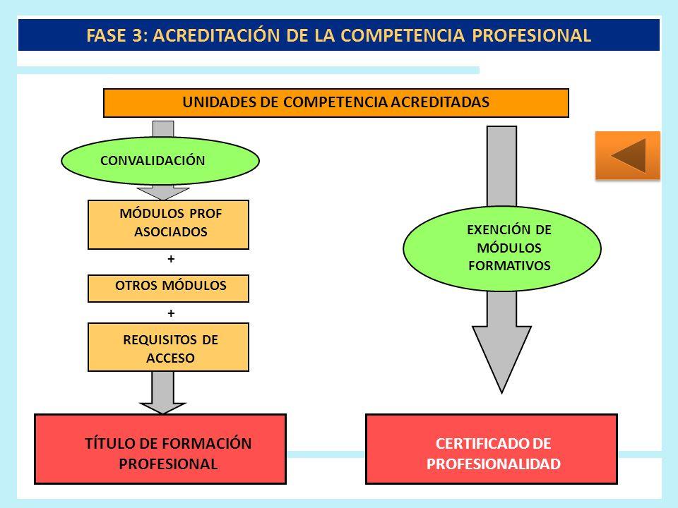 FASE 3: ACREDITACIÓN DE LA COMPETENCIA PROFESIONAL UNIDADES DE COMPETENCIA ACREDITADAS CONVALIDACIÓN MÓDULOS PROF ASOCIADOS + OTROS MÓDULOS + REQUISIT