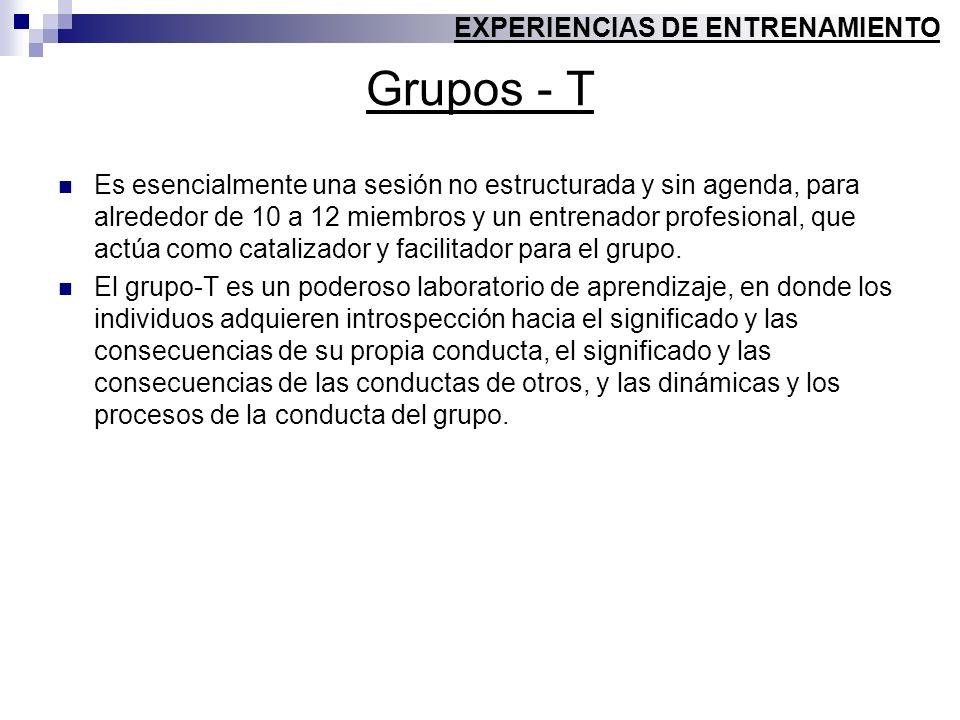 Grupos - T Es esencialmente una sesión no estructurada y sin agenda, para alrededor de 10 a 12 miembros y un entrenador profesional, que actúa como ca