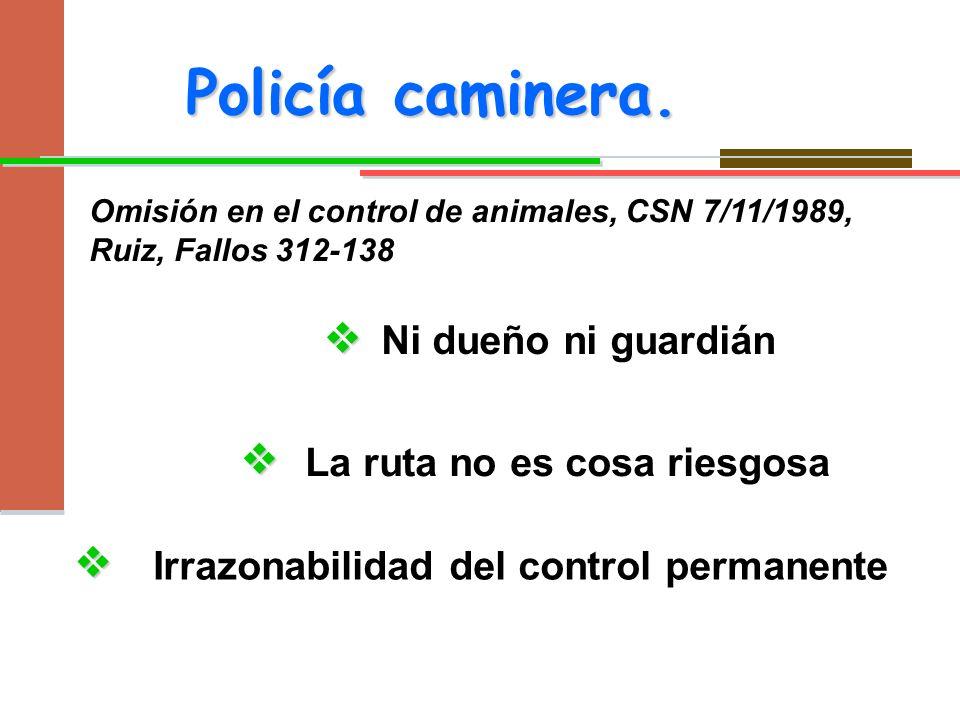 Omisión en el control de animales, CSN 7/11/1989, Ruiz, Fallos 312-138 Policía caminera. Ni dueño ni guardián La ruta no es cosa riesgosa Irrazonabili