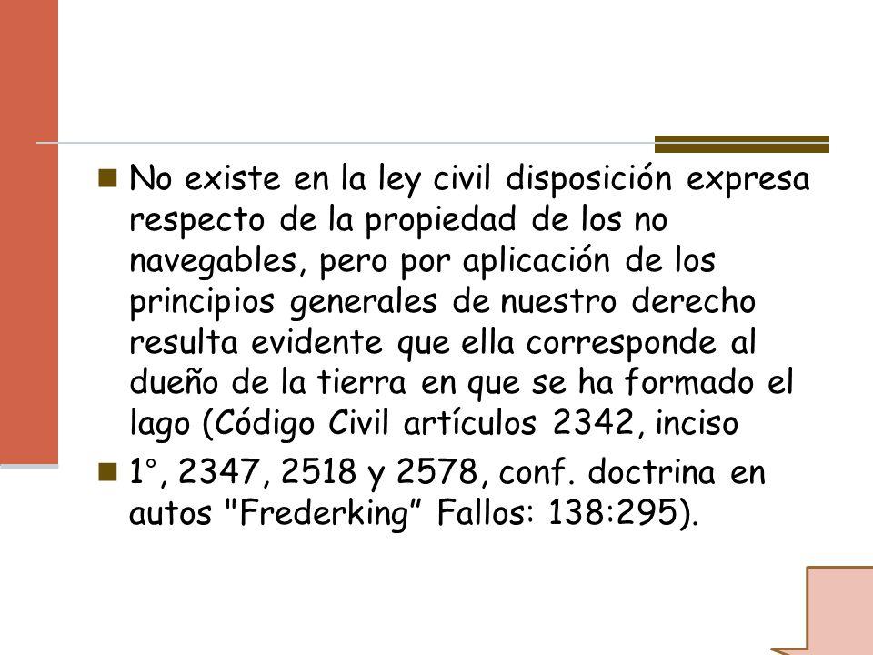 No existe en la ley civil disposición expresa respecto de la propiedad de los no navegables, pero por aplicación de los principios generales de nuestr