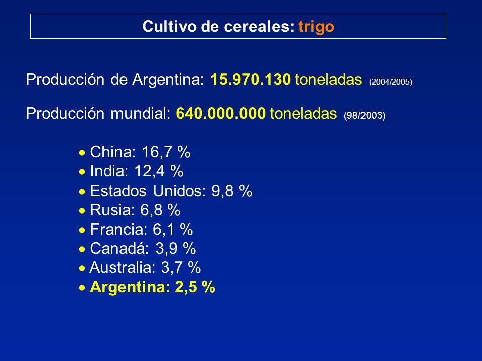 Cultivo de cereales: trigo Producción de Argentina: 15.970.130 toneladas (2004/2005) Producción mundial: 640.000.000 toneladas (98/2003) China: 16,7 %