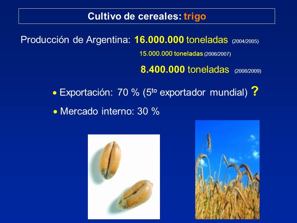 Cultivo de cereales: trigo Producción de Argentina: 16.000.000 toneladas (2004/2005) 15.000.000 toneladas (2006/2007) 8.400.000 toneladas (2008/2009)