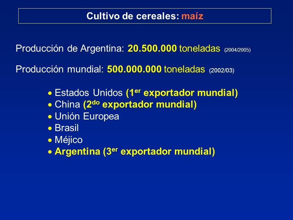 Cultivo de cereales: maíz Producción de Argentina: 20.500.000 toneladas (2004/2005) Producción mundial: 500.000.000 toneladas (2002/03) Estados Unidos