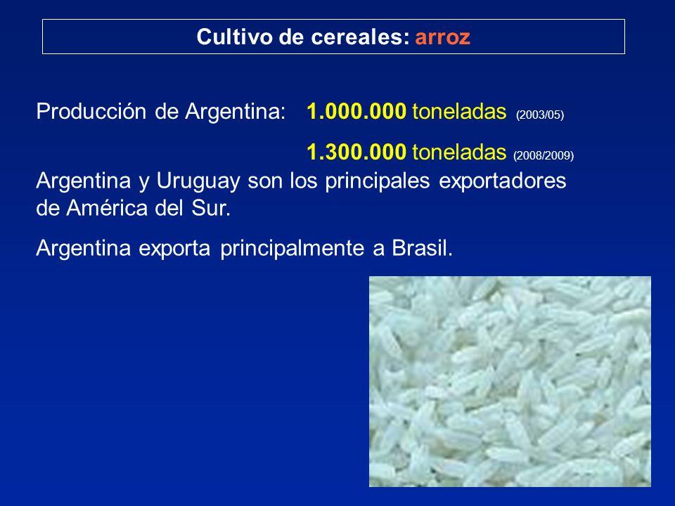 Cultivo de cereales: arroz Producción de Argentina: 1.000.000 toneladas (2003/05) 1.300.000 toneladas (2008/2009) Argentina y Uruguay son los principa