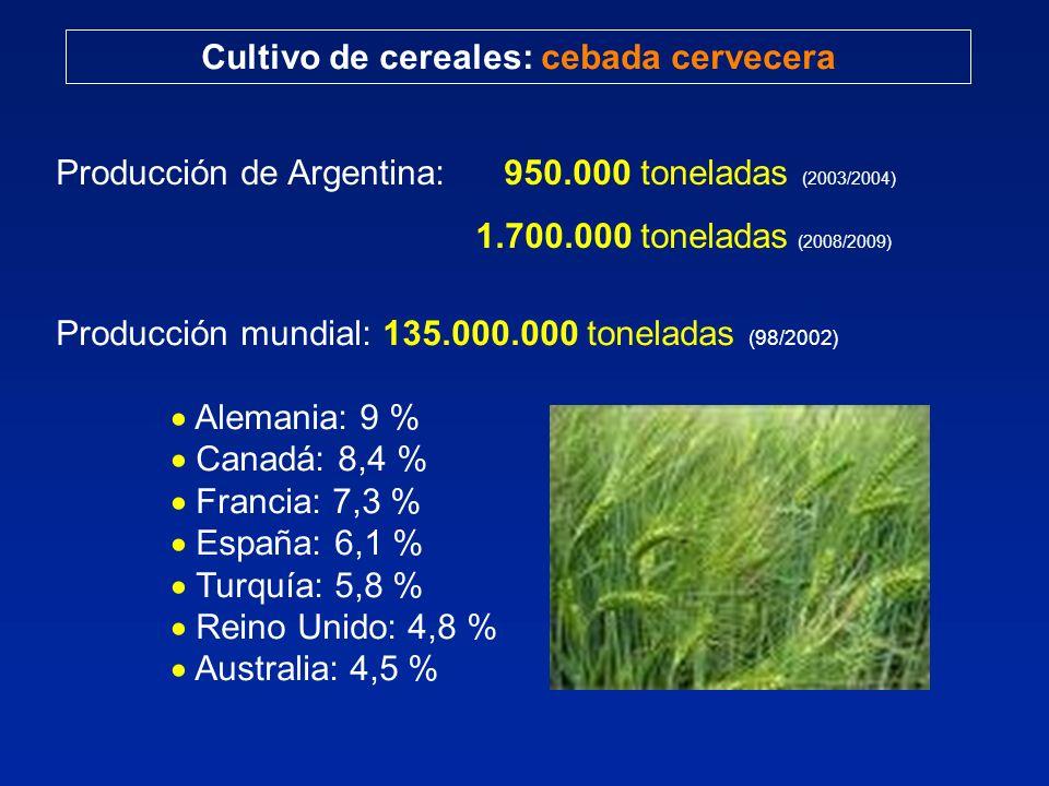Cultivo de cereales: cebada cervecera Producción de Argentina: 950.000 toneladas (2003/2004) 1.700.000 toneladas (2008/2009) Producción mundial: 135.000.000 toneladas (98/2002) Alemania: 9 % Canadá: 8,4 % Francia: 7,3 % España: 6,1 % Turquía: 5,8 % Reino Unido: 4,8 % Australia: 4,5 %