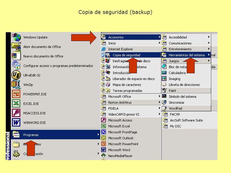 Copia de seguridad (backup)