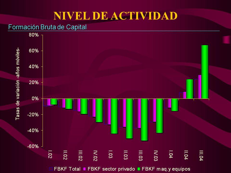 NIVEL DE ACTIVIDAD Formación Bruta de Capital