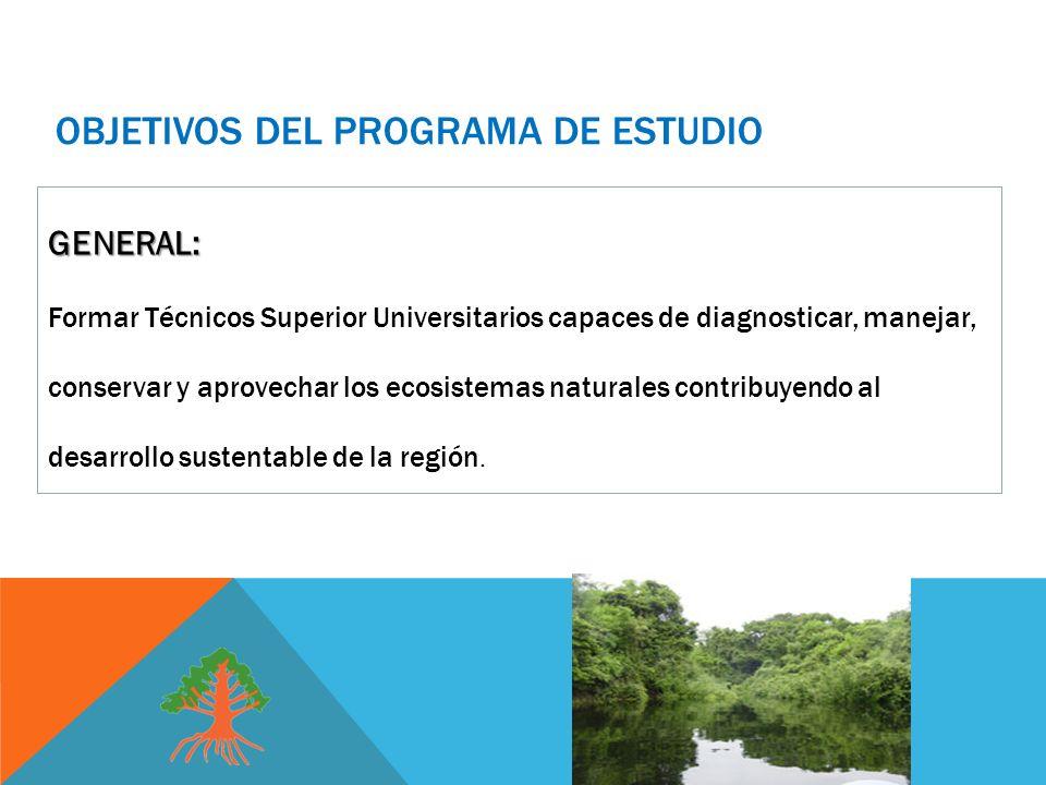 OBJETIVOS DEL PROGRAMA DE ESTUDIO GENERAL: Formar Técnicos Superior Universitarios capaces de diagnosticar, manejar, conservar y aprovechar los ecosistemas naturales contribuyendo al desarrollo sustentable de la región.