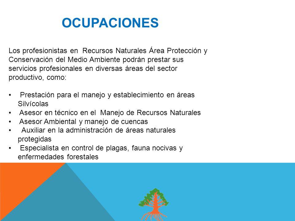 OCUPACIONES Los profesionistas en Recursos Naturales Área Protección y Conservación del Medio Ambiente podrán prestar sus servicios profesionales en diversas áreas del sector productivo, como: Prestación para el manejo y establecimiento en áreas Silvícolas Asesor en técnico en el Manejo de Recursos Naturales Asesor Ambiental y manejo de cuencas Auxiliar en la administración de áreas naturales protegidas Especialista en control de plagas, fauna nocivas y enfermedades forestales