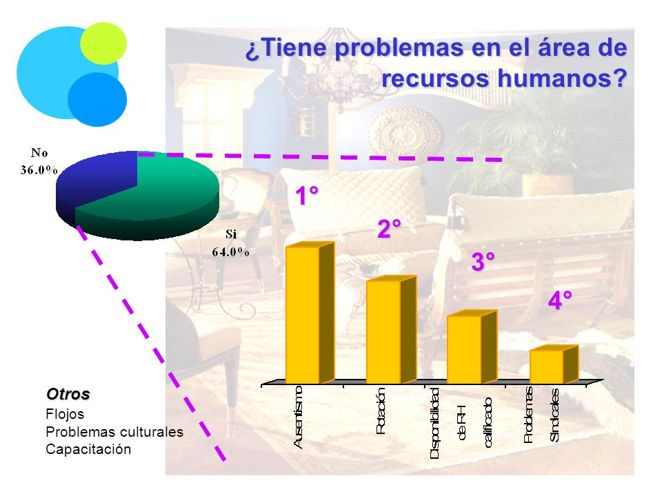 ¿Tiene problemas en el área de recursos humanos? 1° 2° 3° 4° Otros Flojos Problemas culturales Capacitación