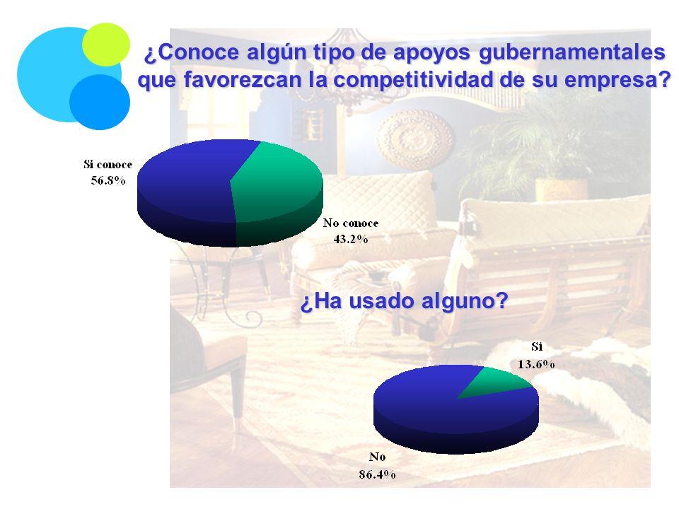 ¿Conoce algún tipo de apoyos gubernamentales que favorezcan la competitividad de su empresa? ¿Ha usado alguno?