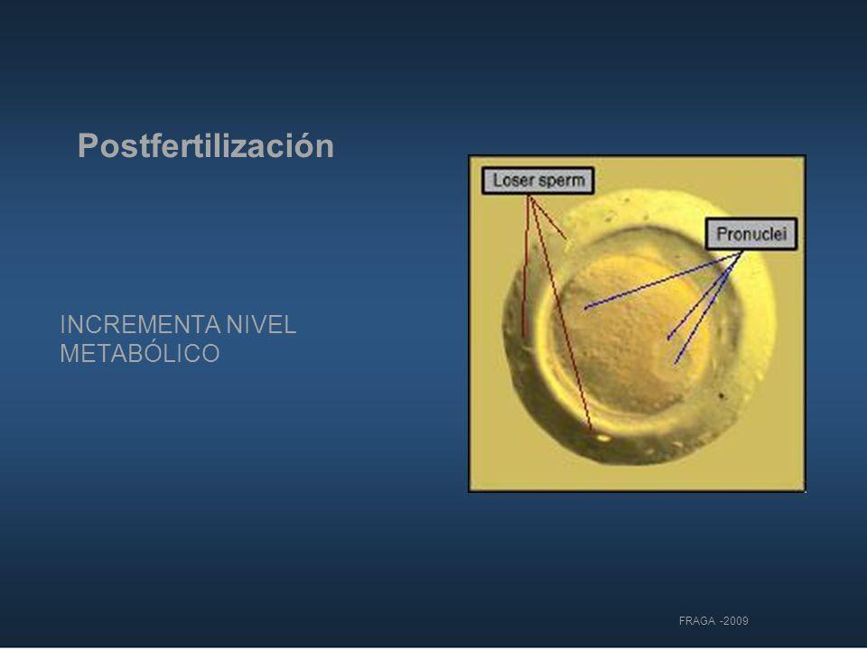 Postfertilización INCREMENTA NIVEL METABÓLICO FRAGA -2009