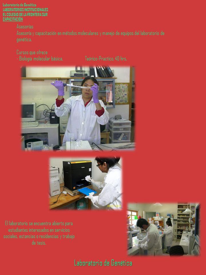 Laboratorio de Genética LABORATORIOS INSTITUCIONALES EL COLEGIO DE LA FRONTERA SUR CAPACITACIÓN Laboratorio de Genética Asesorías Asesoría y capacitación en métodos moleculares y manejo de equipos del laboratorio de genética.